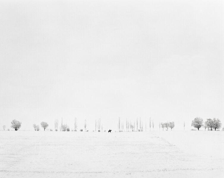 Fyodor Savintsev, 'The Rider, 2012', 2012