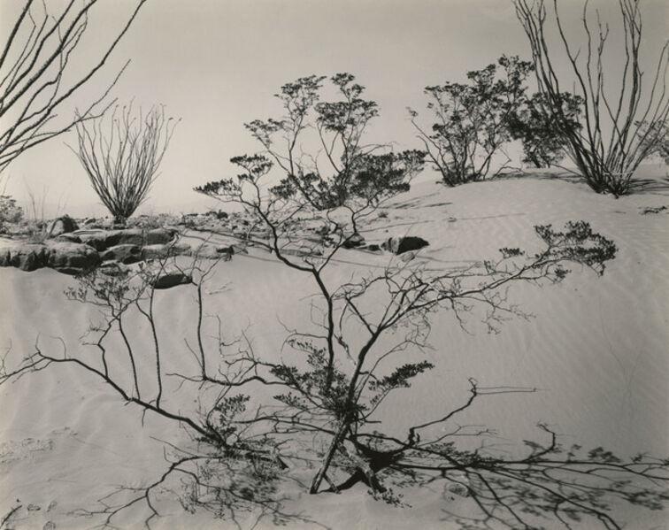 Brett Weston, 'Texas Desert', 1946
