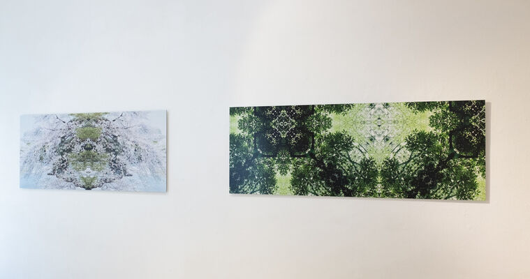 Spring is in the Air - 春爛漫, installation view