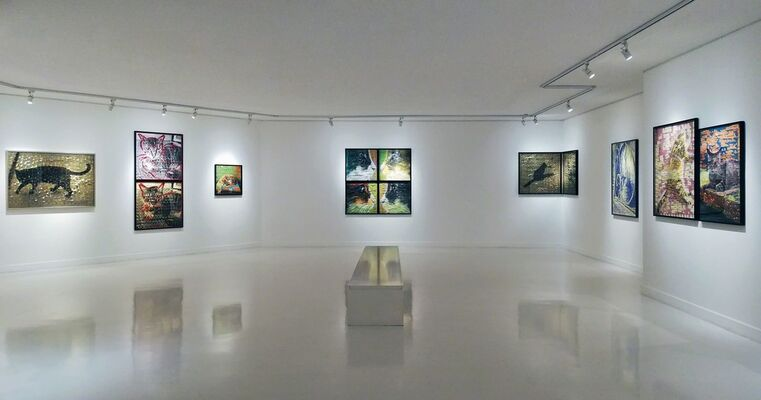 "Ardan Özmenoğlu ""I Thought I Saw A Cat, installation view"