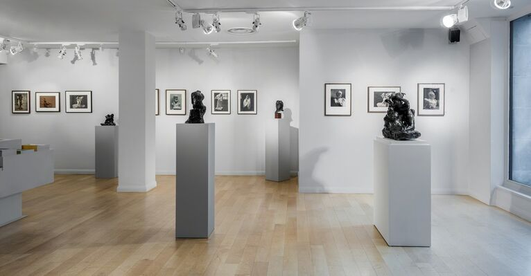 Auguste Rodin: The Photographs, installation view