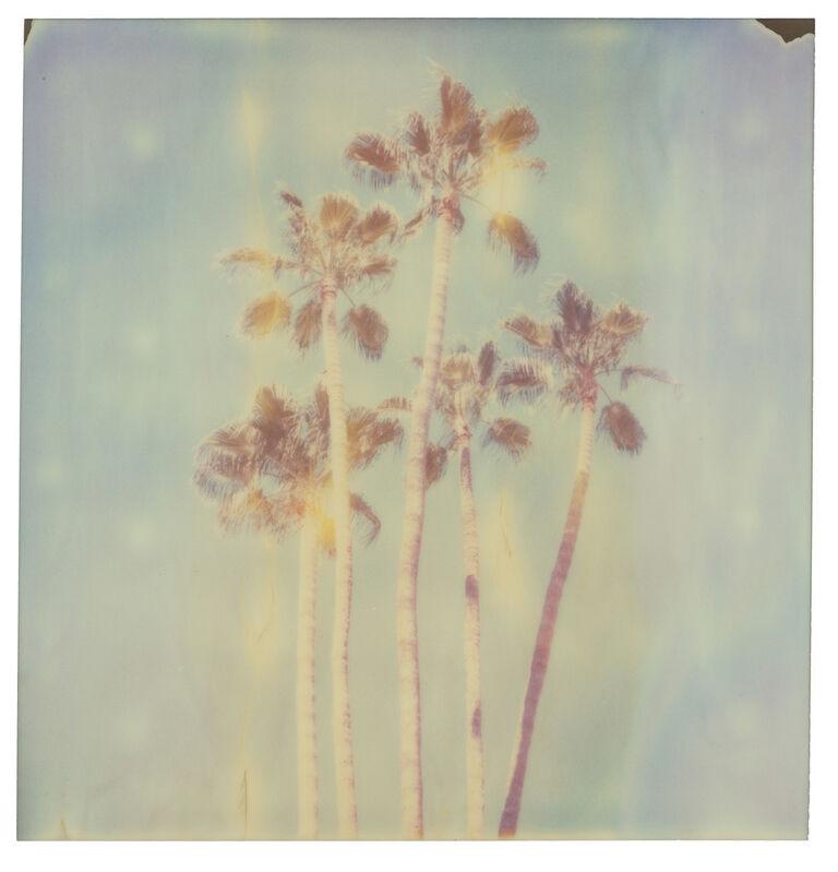 Stefanie Schneider, 'Palm Springs Palm Trees X', 2019, Photography, Digital C-Print, based on a Polaroid, Instantdreams