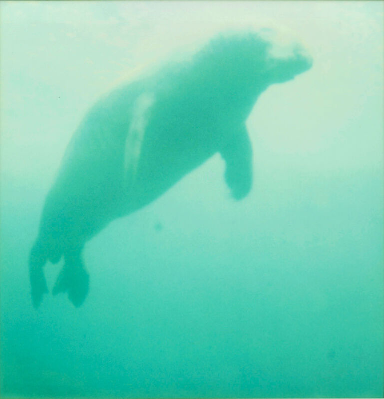 Stefanie Schneider, 'Skywhale (Stay)', 2006, Photography, Digital C-Print, based on a Polaroid, Instantdreams