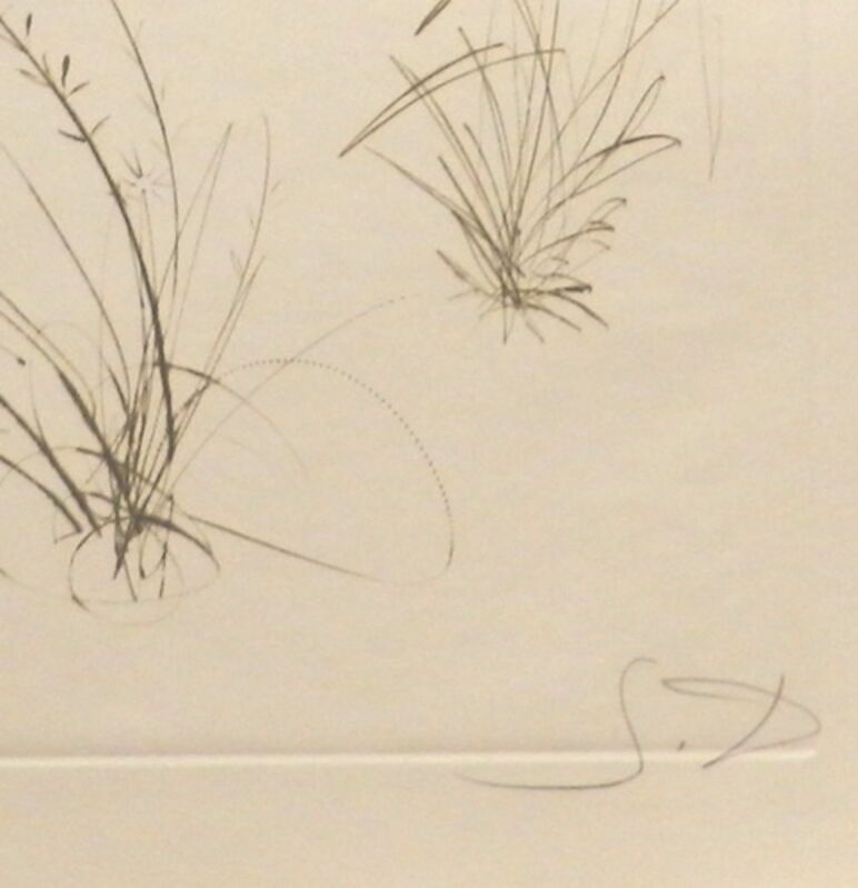Salvador Dalí, 'Tristan et Iseult Brother Orgin', 1970, Print, Etching, Fine Art Acquisitions Dali