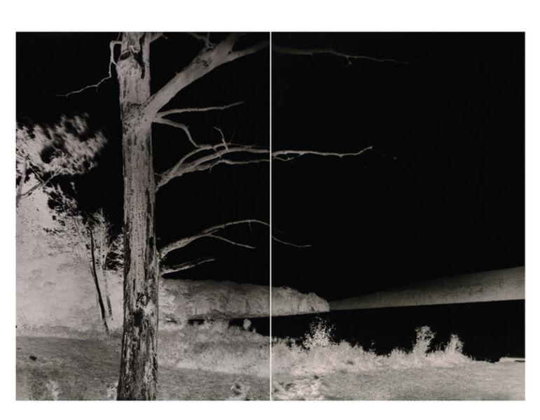 Shi Guorui, 'Lake with Dead Trees, Catskill Mountains, September 9 2019', 2019