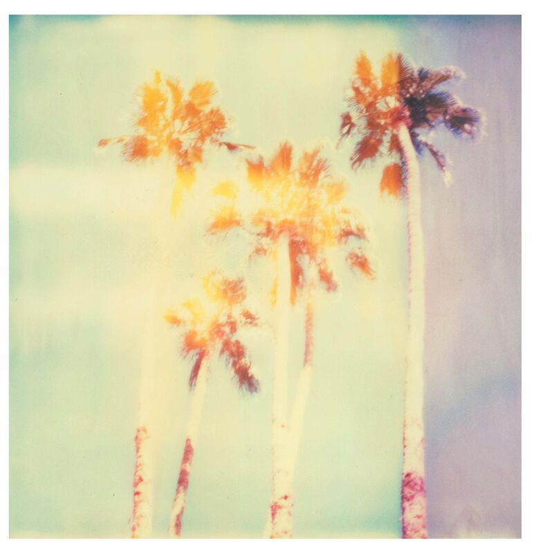 Stefanie Schneider, 'Palm Springs Palm Trees II (Californication)', 2016, Photography, Digital C-Print based on a Polaroid, not mounted, Instantdreams