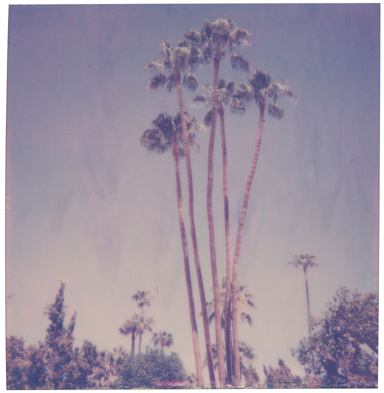 Stefanie Schneider, 'Palm Springs Palm Trees XI', 2019, Photography, Digital C-Print, based on a Polaroid, Instantdreams