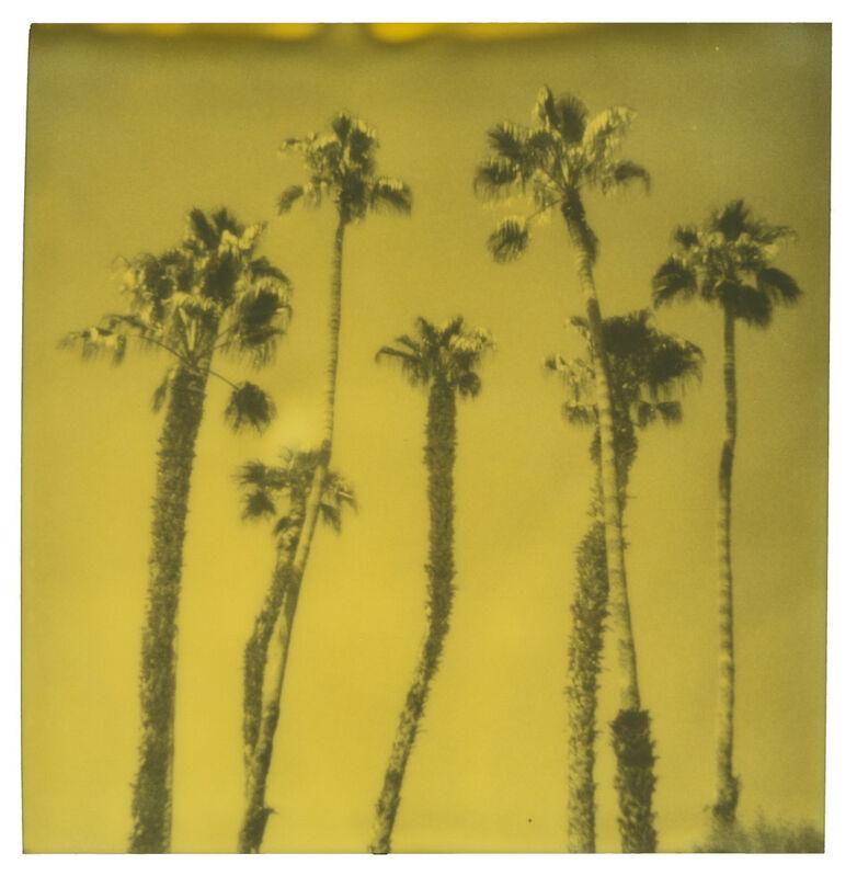 Stefanie Schneider, 'Palm Springs Palm Trees VIII', 2019, Photography, Digital C-Print, based on a Polaroid, Instantdreams