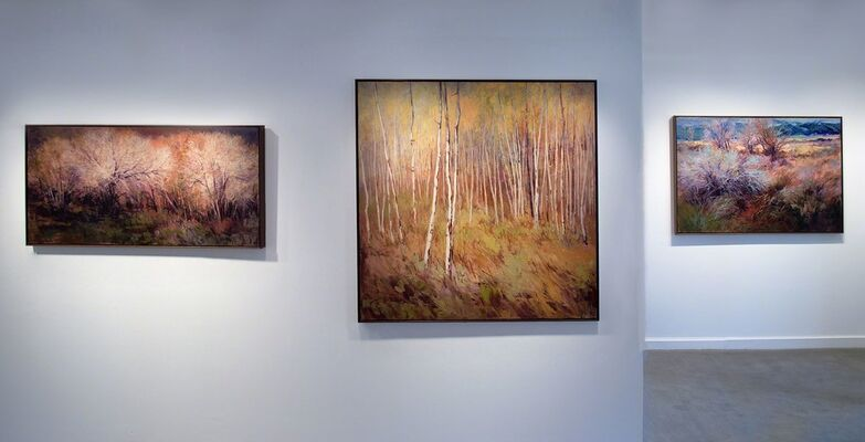 Enchanted Textures New Works by Martha Mans, installation view