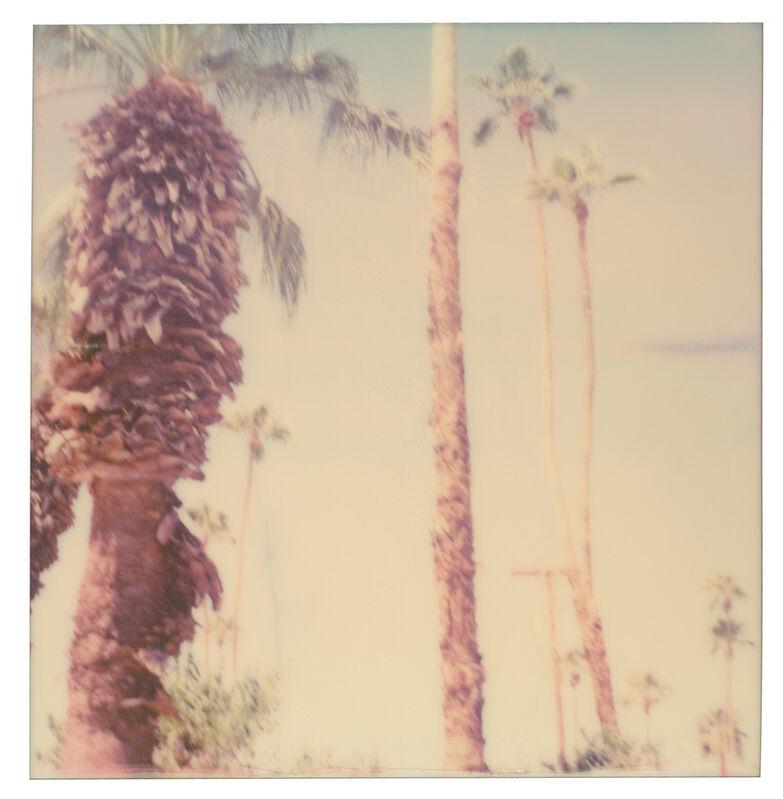 Stefanie Schneider, 'Palm Springs Palm Trees VI', 2019, Photography, Digital C-Print, based on a Polaroid, Instantdreams