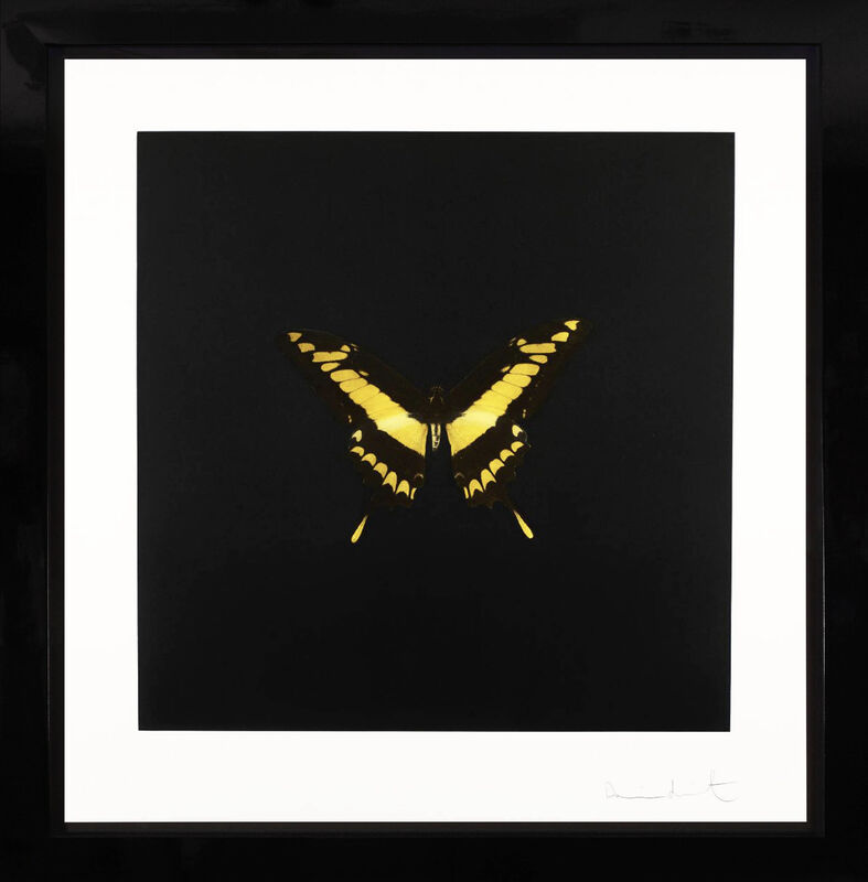 Damien Hirst, 'Butterfly Souls Etching, Yellow ', 2007, Print, Etching on Velin Arches Paper, Arton Contemporary
