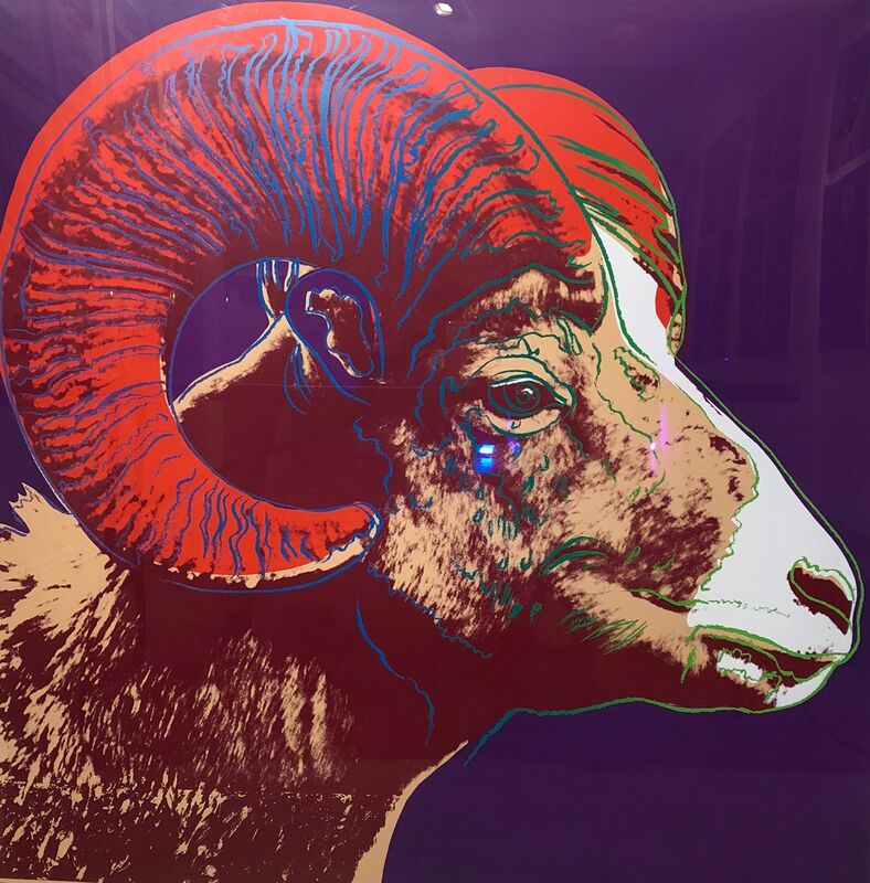 Andy Warhol, 'Bighorn Ram TP (FS. II 302)', 1983, Print, Screenprint on Lenox Museum Board, Revolver Gallery