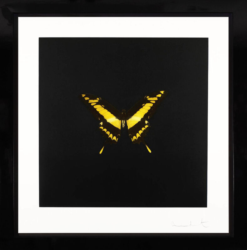 Damien Hirst, 'Yellow Butterfly Soul Etching ', 2007, Print, Etching on Velin Arches Paper, Arton Contemporary