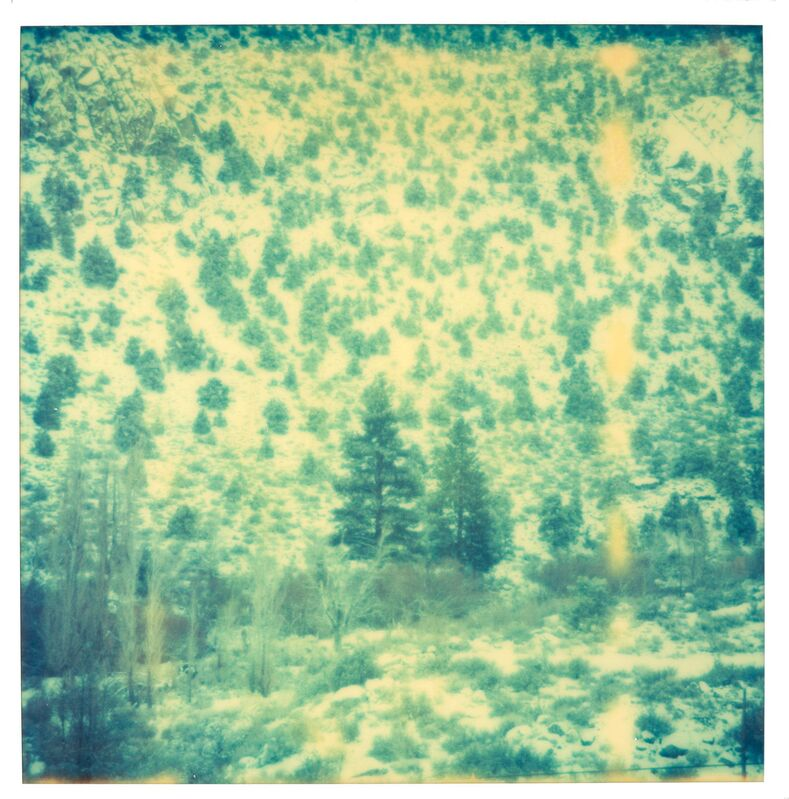 Stefanie Schneider, 'Green Valley (close up) - Wastelands', 2003, Photography, Analog C-Print, hand-printed by the artist on Fuji Crystal Archive Paper, based on a Polaroid, mounted on Aluminum with matte UV-Protection, Instantdreams