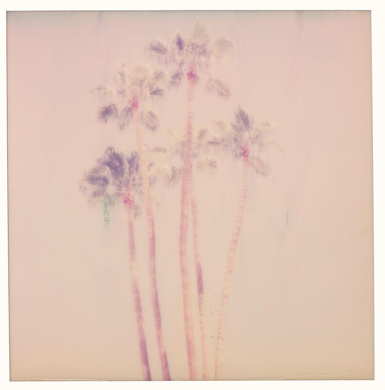 Stefanie Schneider, 'Palm Springs Palm Trees VII (Californication)', 2016, Photography, Digital C-Print, based on a Polaroid, Instantdreams