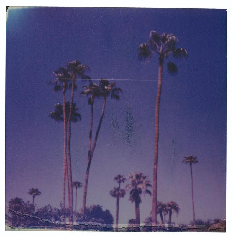 Stefanie Schneider, 'Palm Springs Palm Trees XII (Californication)', 2019, Photography, Digital C-Print, based on a Polaroid, Instantdreams