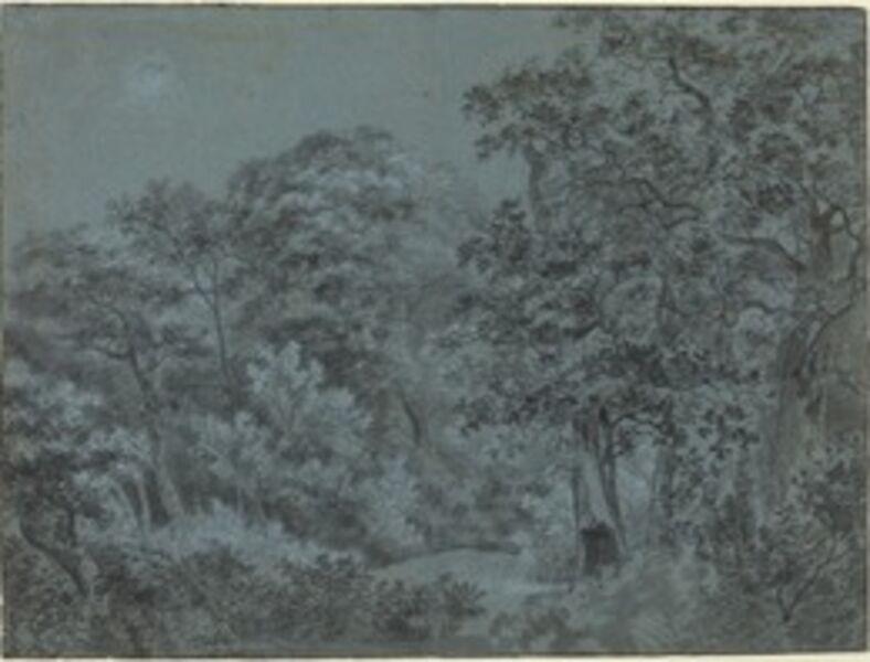 Simon de Vlieger, 'In the Hague Woods'
