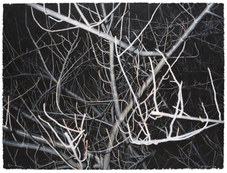 GONG Jian, 'Look at This Grey Tree NO.13', 2016