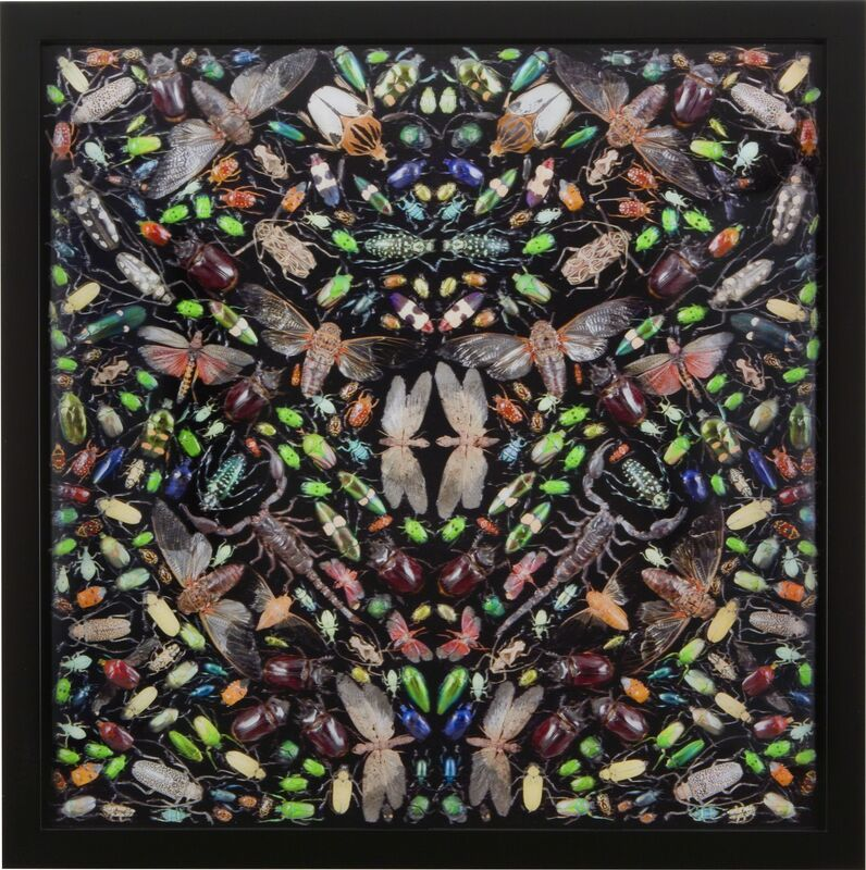 Damien Hirst, 'Inferno', 2009, Print, Lougher Contemporary