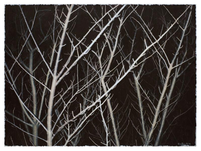 GONG Jian, 'Gray Tree', 2016
