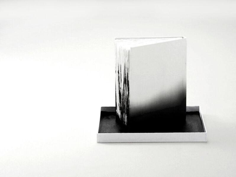 Yasutomo Ota, 'Das Aufnahmevermögen von Weiß', 2014