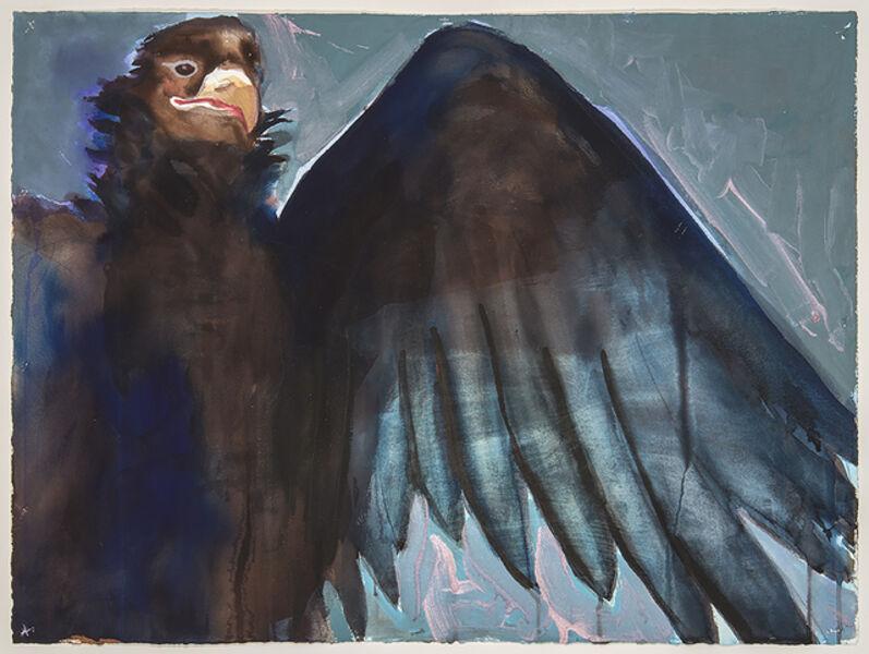 Karen Heagle, 'Black Vulture with Wing spread', 2018