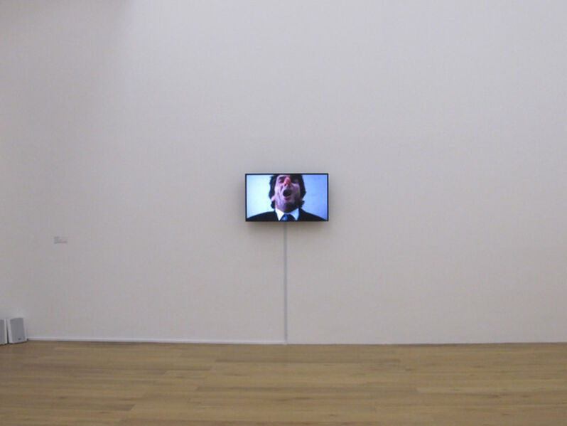 Mika Rottenberg, 'Sneeze', 2012
