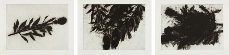 Donald Sultan, 'Black Roses (October); Black Roses (November); and Black Roses (December)', 1989, Print, Three aquatints, on Twinrocker Paper, with full margins, Phillips
