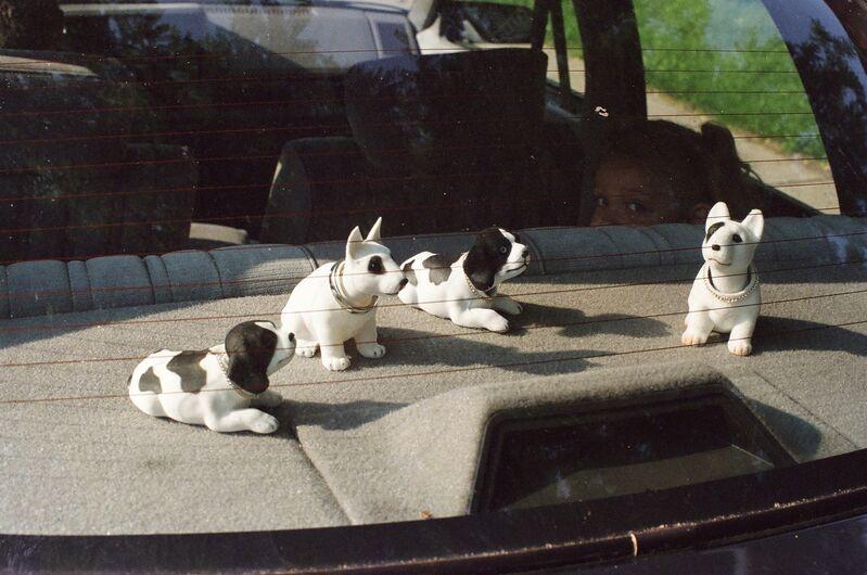 Harry Roseman, 'Nodding Dogs', 2003, Photography, C-print, Atrium Gallery