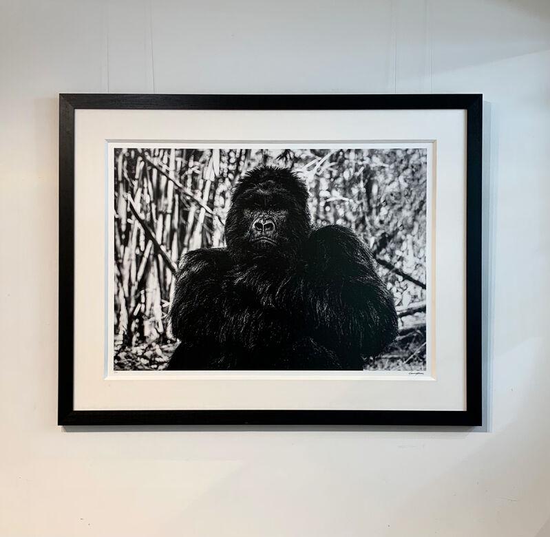 Cameron Yarrow, 'The Bodyguard', 2019, Photography, Archival pigment print, Kunsthuis Amsterdam