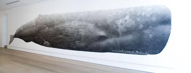 Jonathan Delafield Cook, 'Sperm Whale II', 2013, Painting, Charcoal on linen,  Olsen Irwin