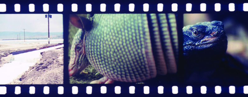 Tacita Dean, 'JG', 2013, Video/Film/Animation, Anamorphic 35mm film, color and black and white, optical sound., Hammer Museum