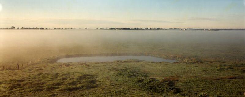 Thaddeus Holownia, 'Jolicure Pond, #10', 1999, Photography, Chromogenic contact print, Corkin Gallery