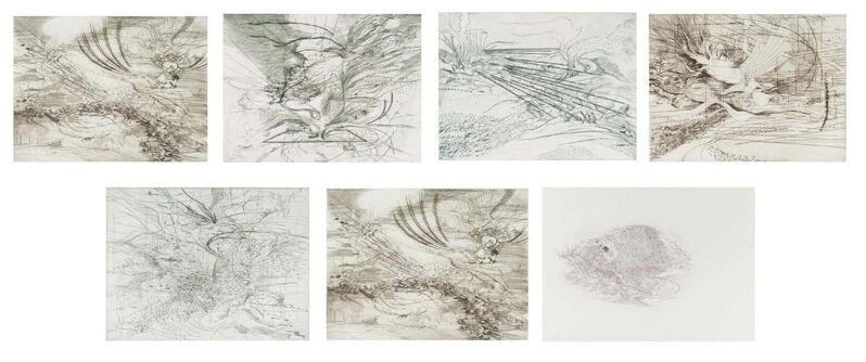 Julie Mehretu, 'Landscape Allegories,', 2004, Print, Suite of 7 copperplate etchings with engraving,Dry point, sugar-bite and aquatint, Carolina Nitsch Contemporary Art