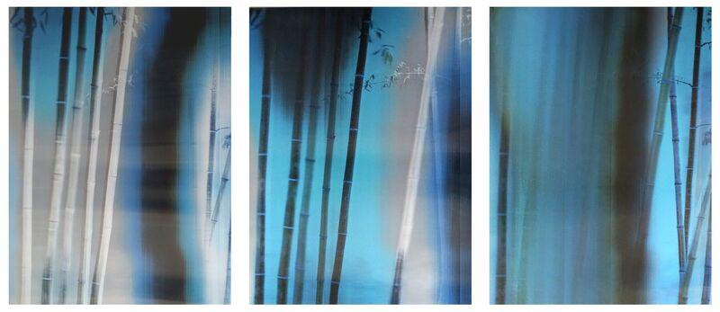 Han Lei, 'Bamboo No.1', 2015, Photography, Lenticular photograph, M97 Gallery