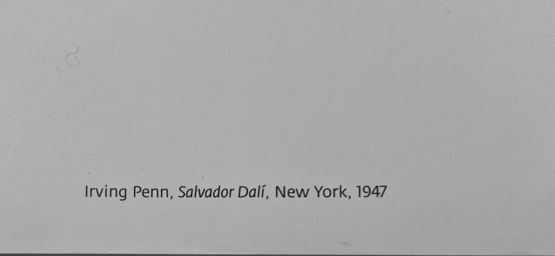 Salvador Dalí, 'Rare Salvador Dali- Irving Penn High Quality Black and White Portrait Photographic Museum Exhibition Poster  ', 2016, Ephemera or Merchandise, High Quality Black and White Portrait Photographic Museum Exhibition Poster, David Lawrence Gallery