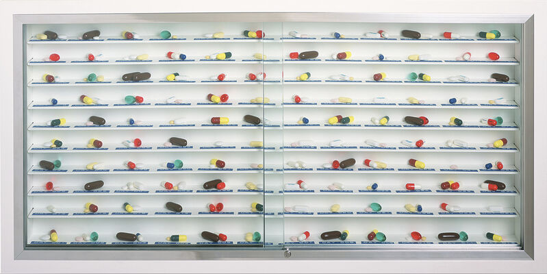 Damien Hirst, 'Day by Day', 2003, Sculpture, Glass, painted MDF, aluminum, stainless steel, Dymo tape and pills, Neon Gallery
