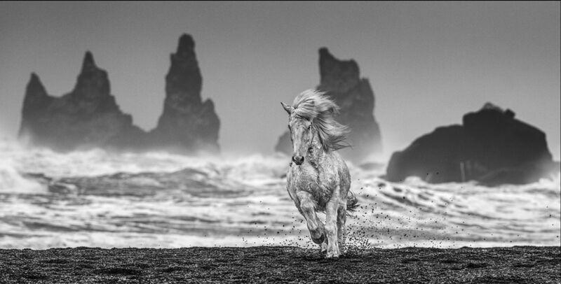 David Yarrow, 'White Horses', 2018, Print, Silver Gelatin Print, ArtLife Gallery