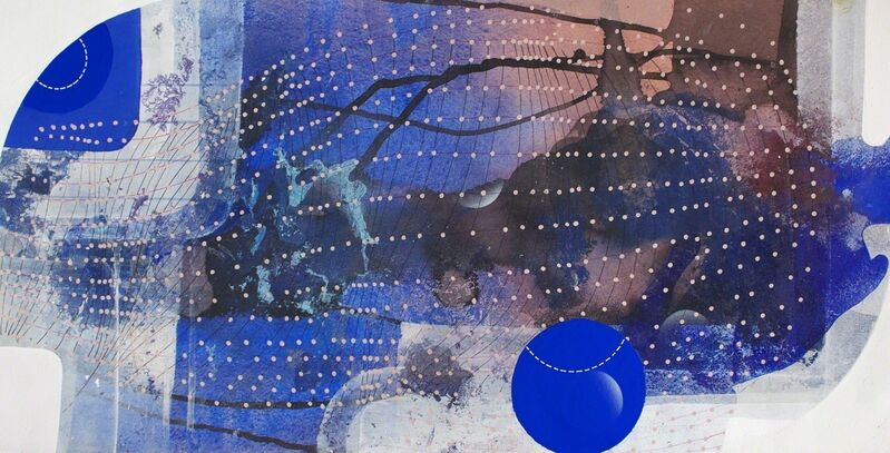 Joan Belmar, 'Domain 13: Territories', 2015, Painting, Acrylic, Ink, Oil, Gouache on Paper, Adah Rose Gallery