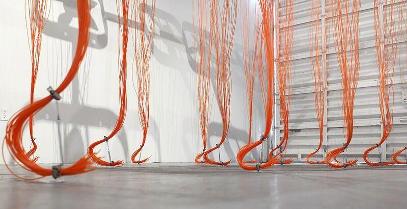 David Jang, 'Prevaricate', 2017, Installation, Lancaster Museum of Art and History