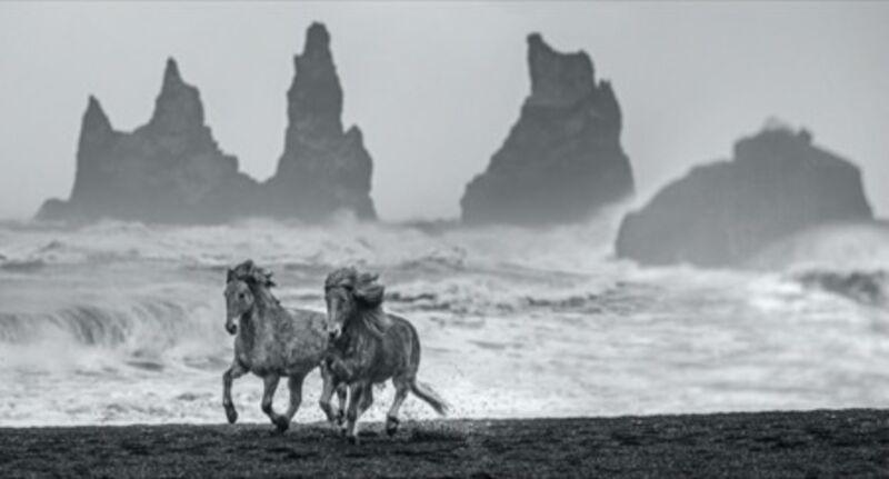 David Yarrow, 'Wild Horses', 2018, Photography, Archival Pigment Print, Maddox Gallery