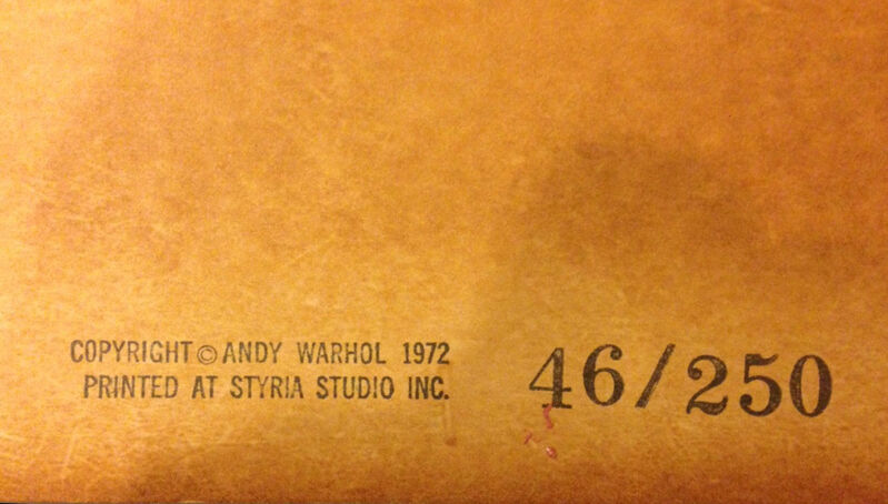 Andy Warhol, 'Mao', 1972, Print, Color Silkscreen, RestelliArtCo.