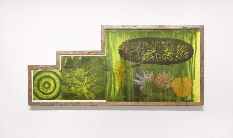Judy Pfaff, 'Untitled (Target, Garden, Lily Pad)', 2001, Print, Photogravure, etching, lithograph, chine collé, hand applied dye with original custom frame, Goya Contemporary/Goya-Girl Press