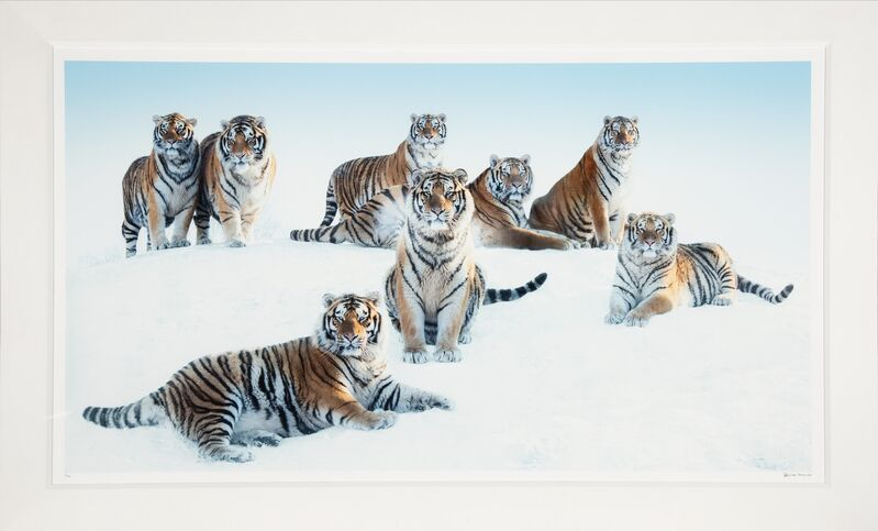 David Yarrow, 'The Siberians', 2016, Photography, Oversized digital pigment print, Heritage Auctions