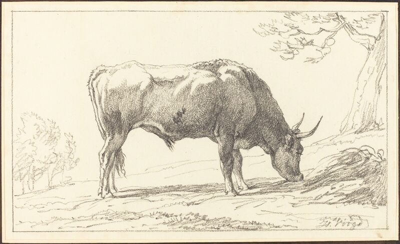 Hendrik Voogd, 'A Cow Grazing', Drawing, Collage or other Work on Paper, Black chalk on wove paper, National Gallery of Art, Washington, D.C.
