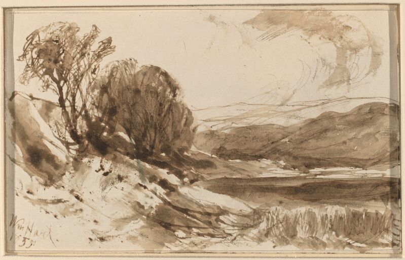 William M. Hart, 'Hilly Landscape with Trees', 1855, Drawing, Collage or other Work on Paper, Pen and brown ink with brown wash, National Gallery of Art, Washington, D.C.