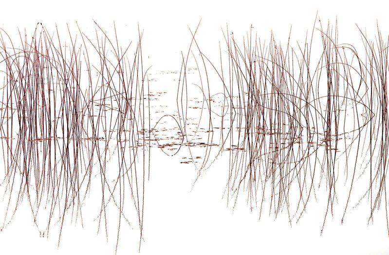 Bill Jackson, 'Ballet', 20015, Photography, Pigment Print, Walter Wickiser Gallery