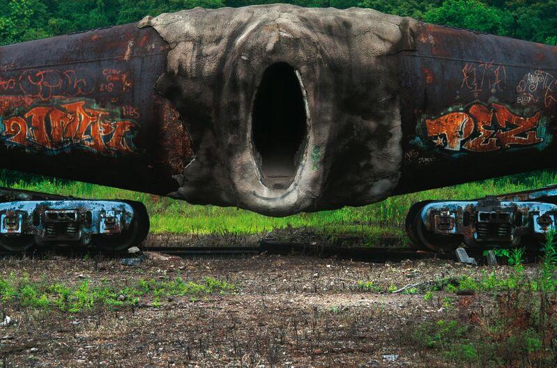 Raqs Media Collective, 'Brazen', 2008, Photography, Diasec mounted archival digital print, Nature Morte