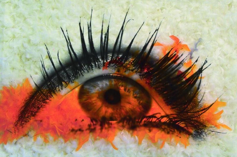 Daniel Gastaud, 'Furious Orange', 2015, Mixed Media, Feathers under Plexiglas, Eden Fine Art