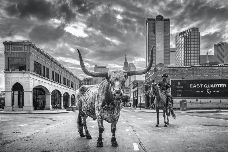 David Yarrow, 'A Dallas Cowboy', 2020, Photography, Digital Pigment Print on Archival 315gsm Hahnemuhle Photo Rag Baryta Paper, Samuel Owen Gallery
